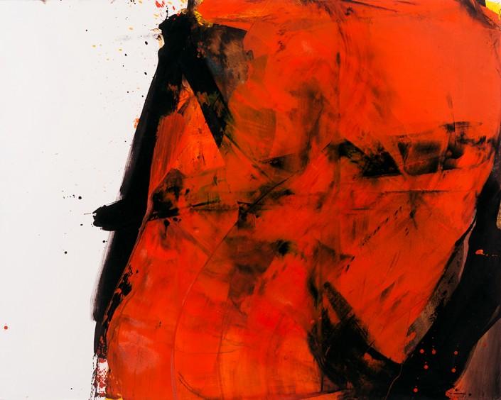 Painting 2010 (1) 162x130cm Damien DIAZ-DIAZ