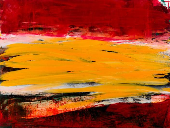 Painting 2011 (2) 160x120cm Damien DIAZ-DIAZ