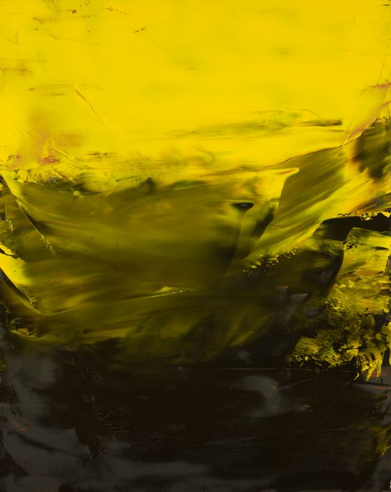 Astrum 2017 (14) 73x92cm Damien DIAZ-DIAZ